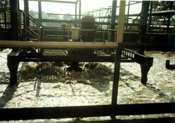 Blok technologiczny - zdjęcia wykonane w 1996 roku